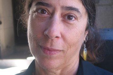 Nov 28, meet Alice Rothchild: an Israel Palestine Justice event