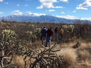 Interested in the US-Mexico Border crossing?