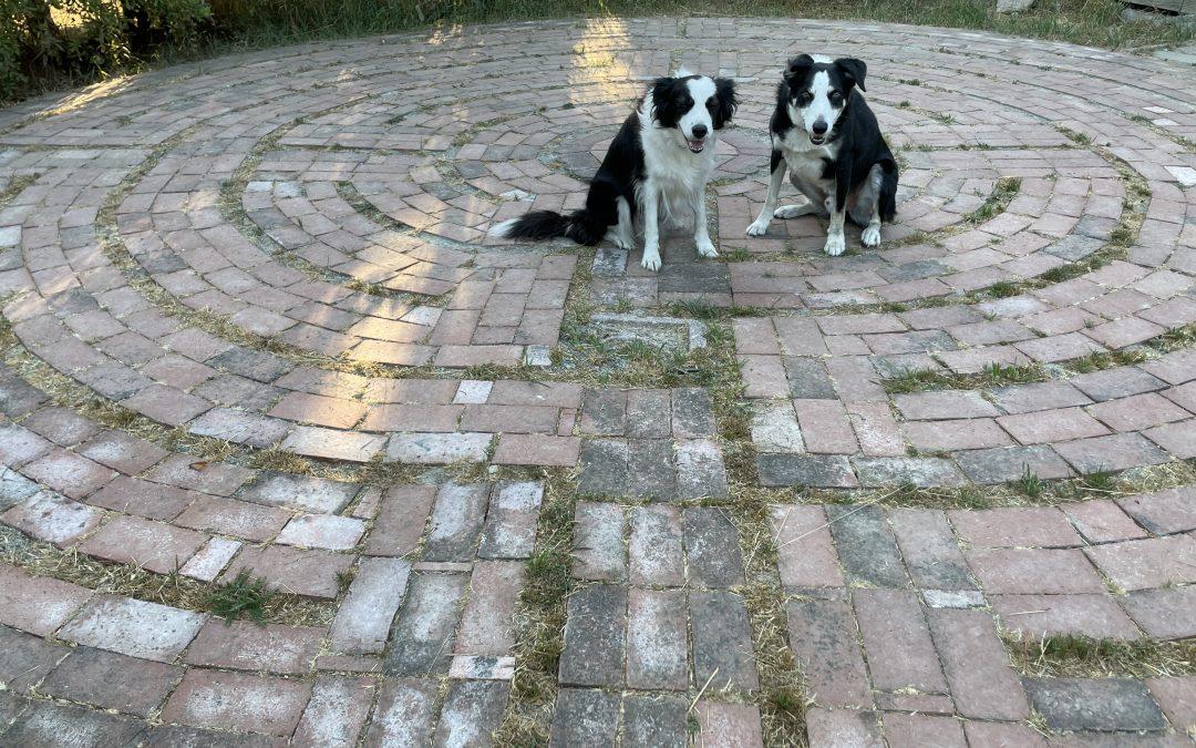 Tending the Labyrinth
